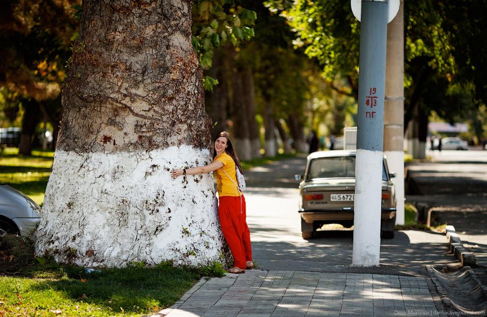 3. И все же Ташкент остался таким же замечательным городом, каким я его запомнил. Он очень удоб