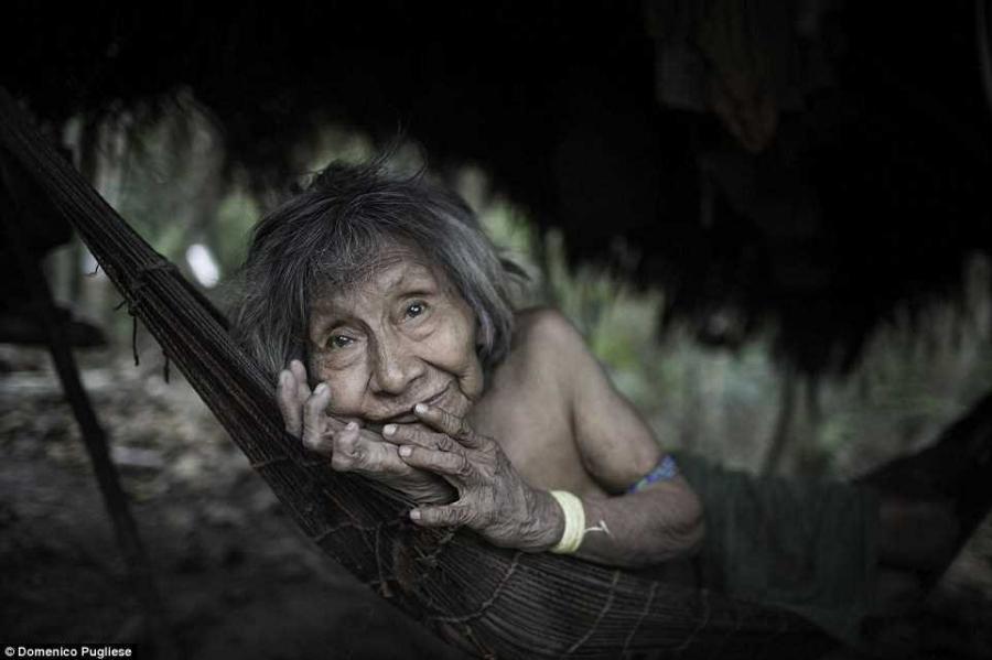 7. «Они кормят белок и обезьян точно так, как кормят своих детей, грудью, — говорит Пульезе. — Это п