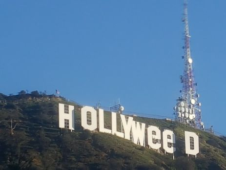 Вандал превратил популярную надпись Hollywood вЛос-Анджелесе вHollyweed