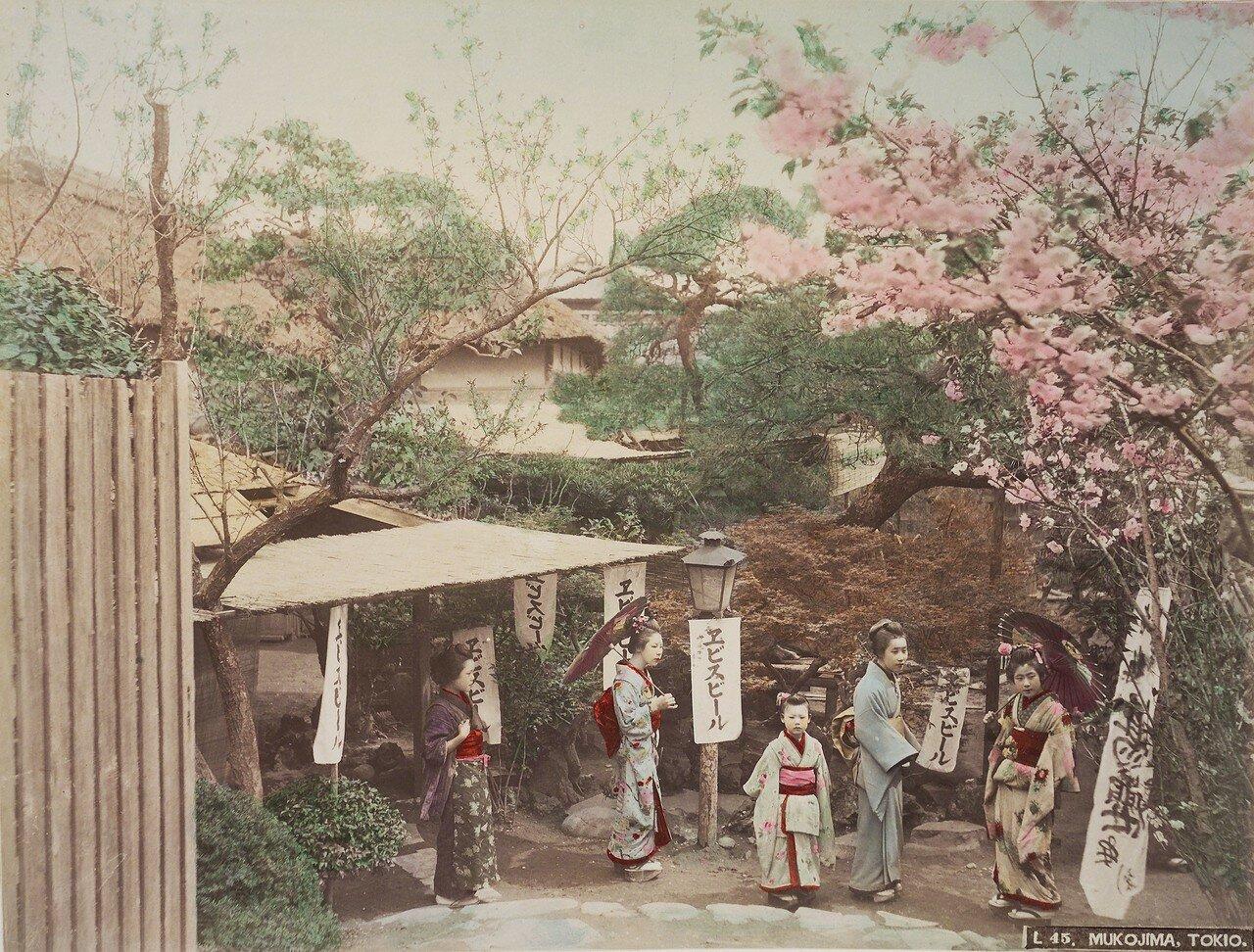Токио. Мукодзима