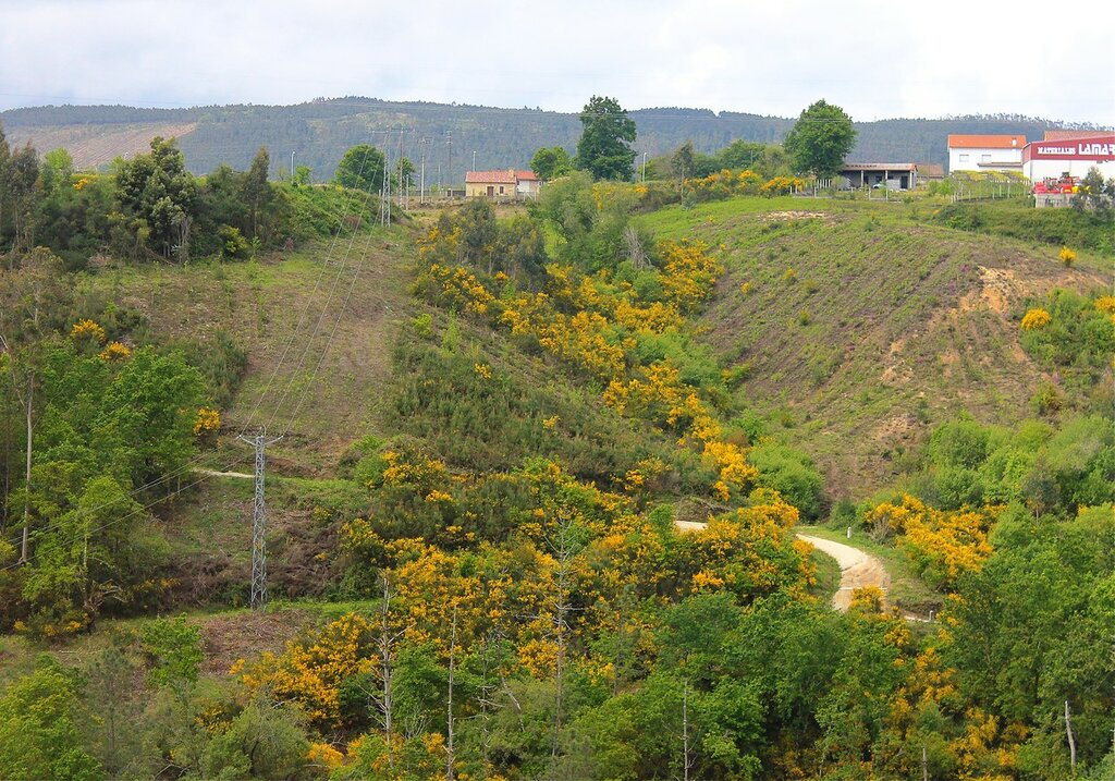 Pontevedra province landscapes, Galicia