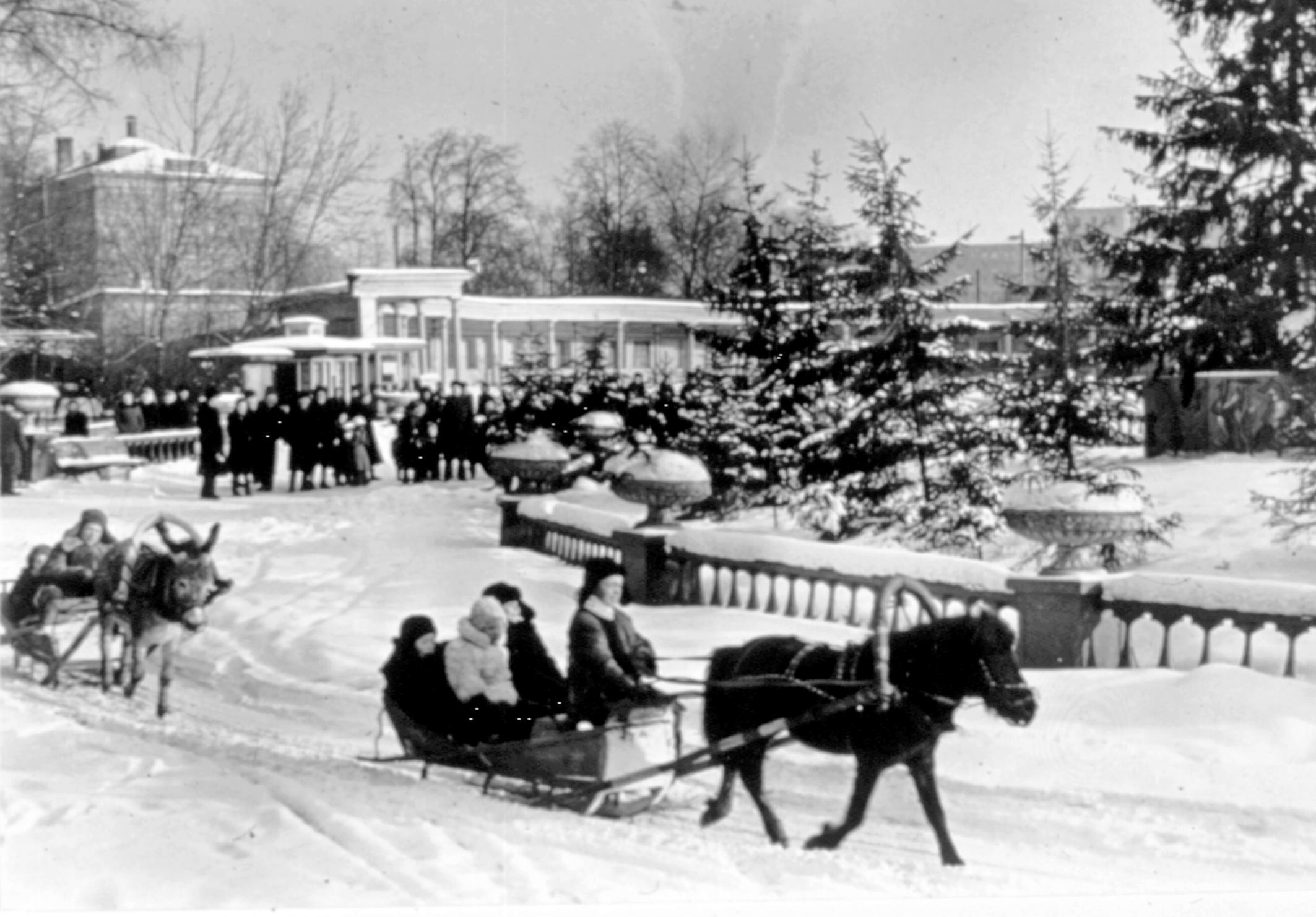 Круг катания, 1950-е годы. Фото: архив Московского зоопарка.