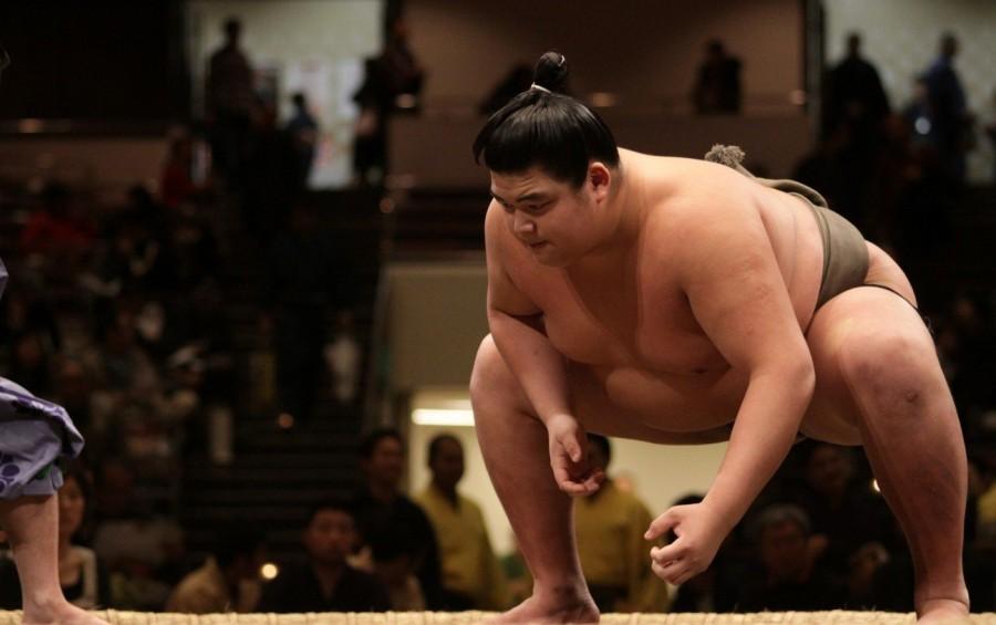 4. В Японии запрещается иметь лишний вес Учитывая, что сумо возникло именно в Японии, этот закон каж