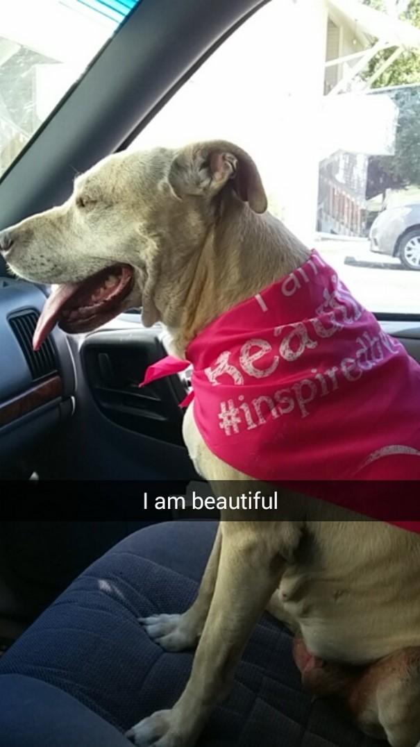 «Я красавица».