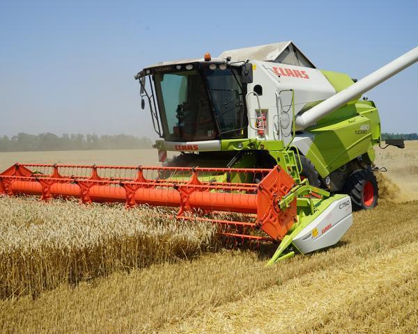 Минсельхоз: экспорт зерна вТурцию необходимо восстановить на прошлом уровне