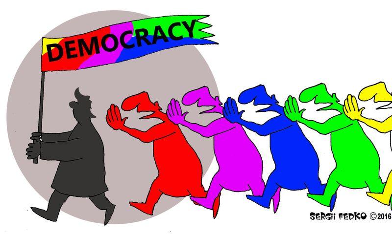 irony_of_democracy__sergii_fedko_1.jpeg