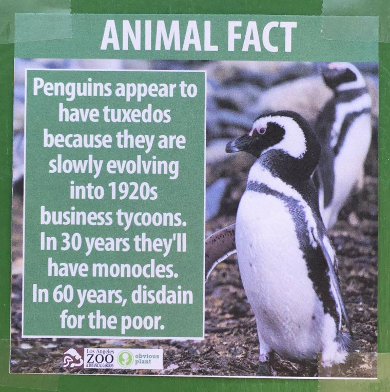 He installs hilarious fake animal facts in the zoo of Los Angeles