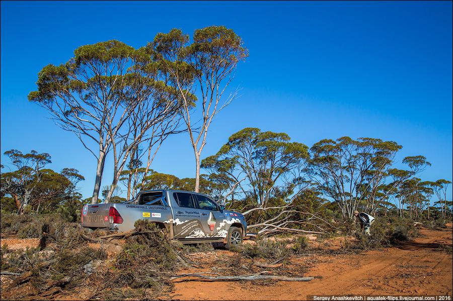 Путешествие по Австралийскому Дикому Западу