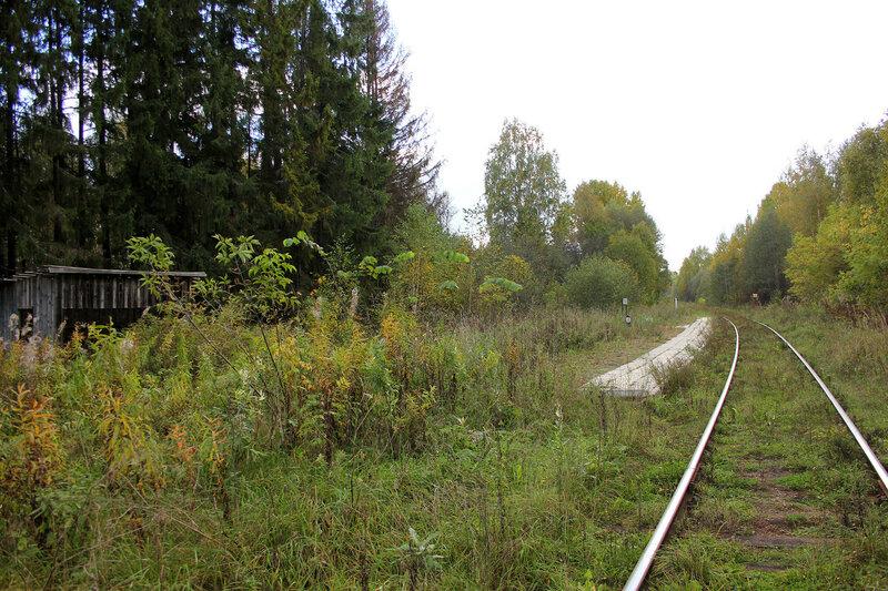 Платформа Ивановские казармы (358 км), вид на Овинище, перегон Весьегонск - Овинище-2