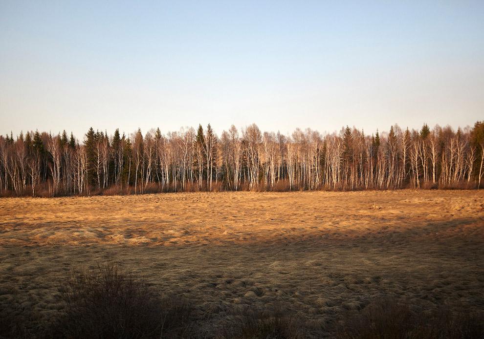 7. Кто-то поджег траву. (Фото Tom Roe):