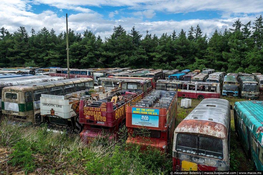 В какой-то момент на территорию проникли молодчики, устроили здесь погром, сожгли часть автобусов, у