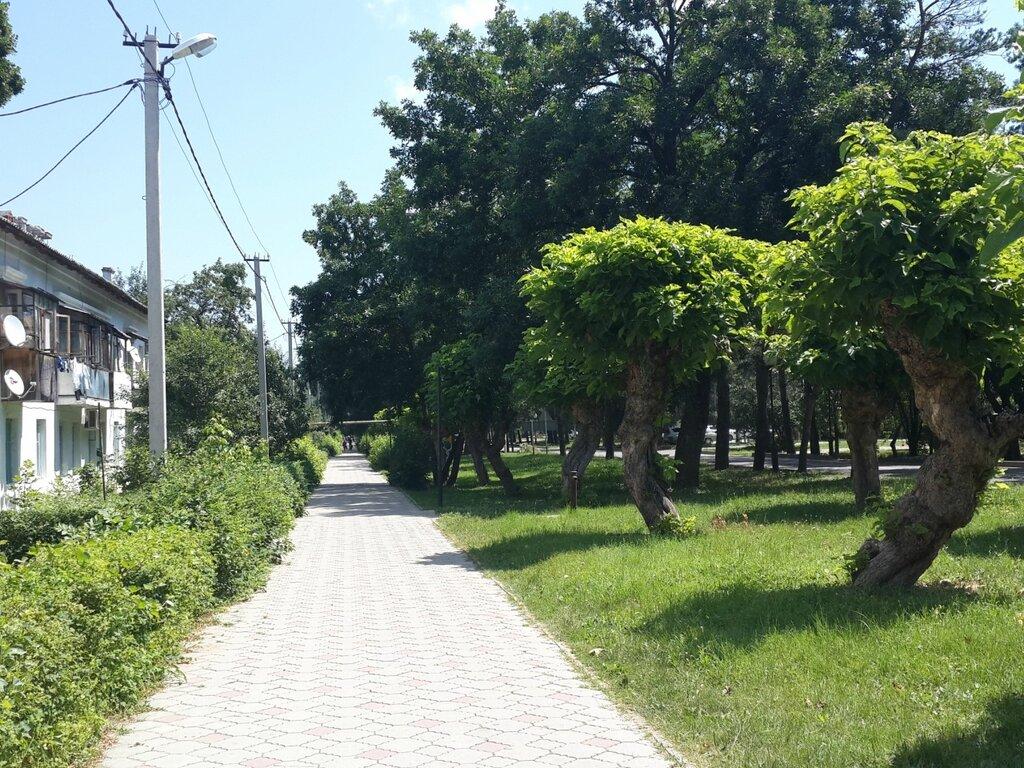 Пешие и велопрогулки по Краснодару - ищу компаньонов - Страница 4 0_80faa_695a428a_XXL