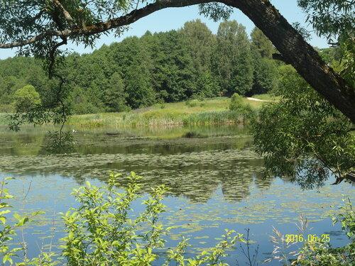 Рябчинское озеро.