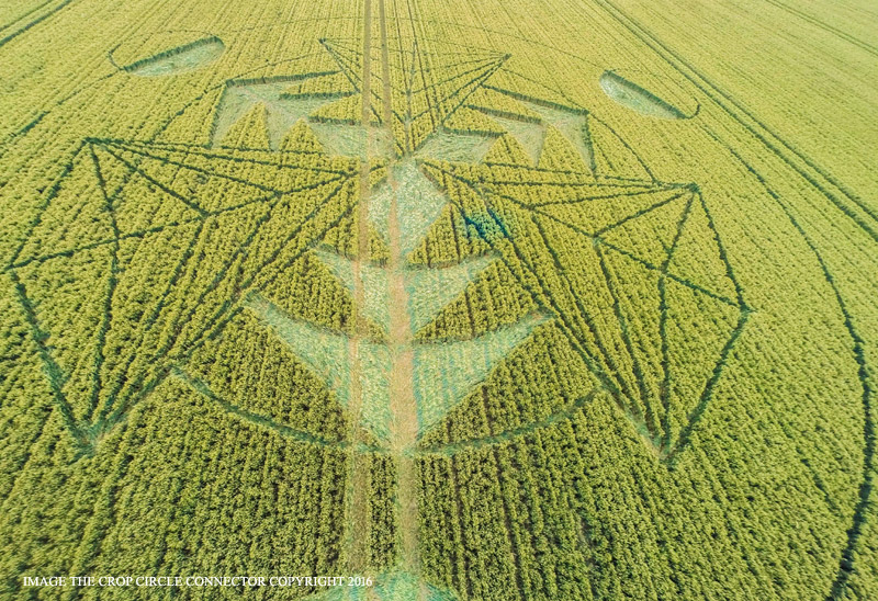 Crop Circle at Wiltshire, UK - 16 July 2016