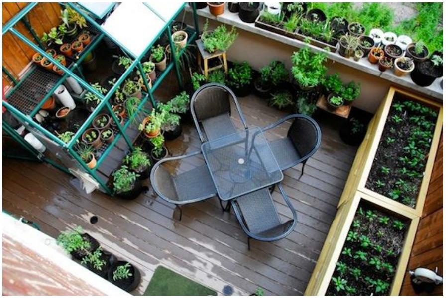 Овощи на балконе своими руками 988