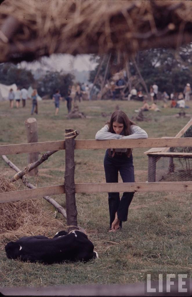 1. Вудстокская ярмарка музыки и искусств (англ. Woodstock Music & Art Fair, в разговорной речи «Вудс