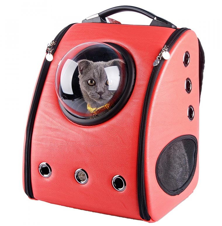 Cat Backpacks - Clever backpacks equipped with bubble windows to travel with your cat
