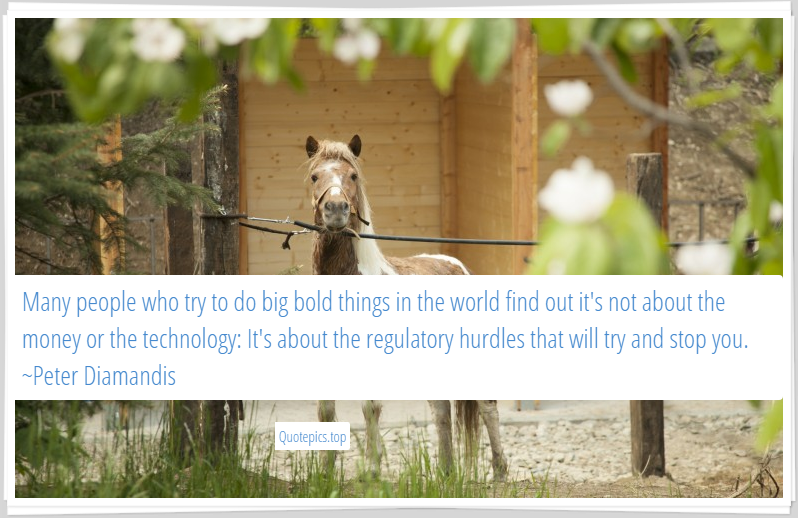 Many people who try to do big bold things in the world find out it's not about the money or the technology: It's about the regulatory hurdles that will try and stop you. ~Peter Diamandis