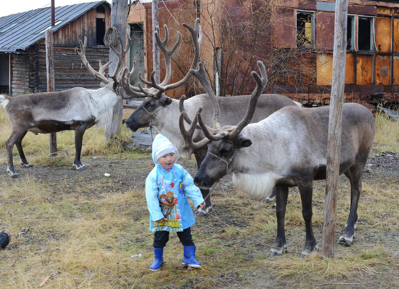 мальчик и олень.jpg