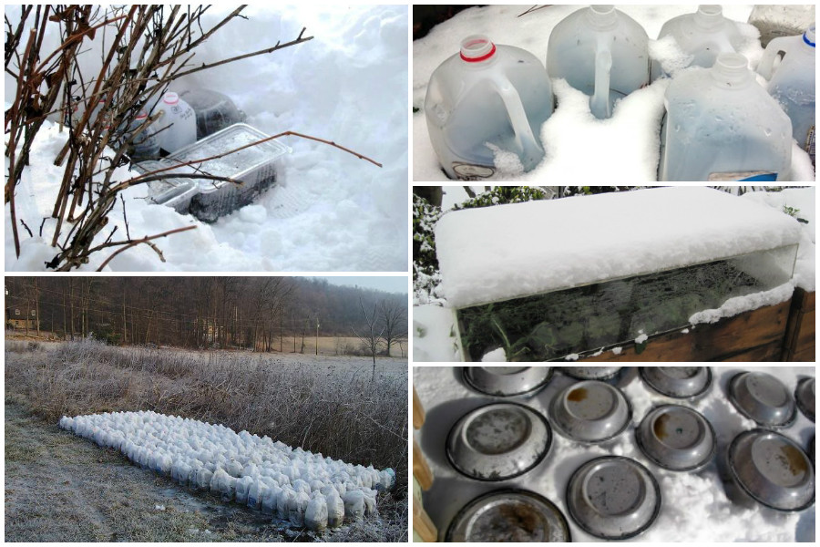 Об особенностях и правилах посадки семян под зиму