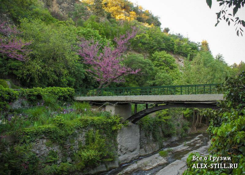 Мосты в Ботаническом саду Тбилиси