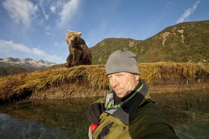 1. Когда медведь от тебя в двух шагах.