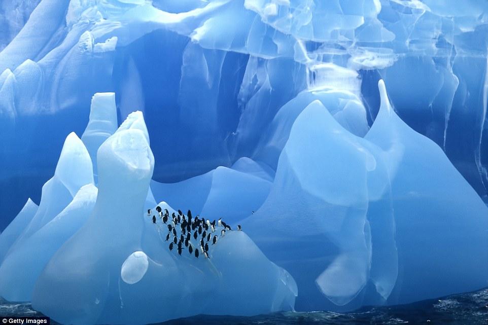 Ледник Перито-Морено в Аргентине.