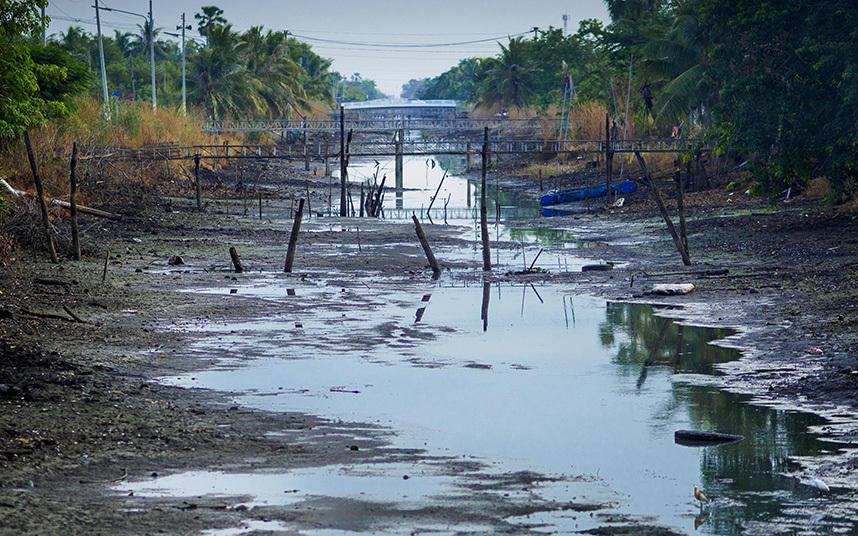 13. Пересохший оросительный канал неподалеку от Бангкока.