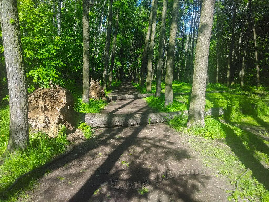 Тимирязевский парк-40 copy.jpg