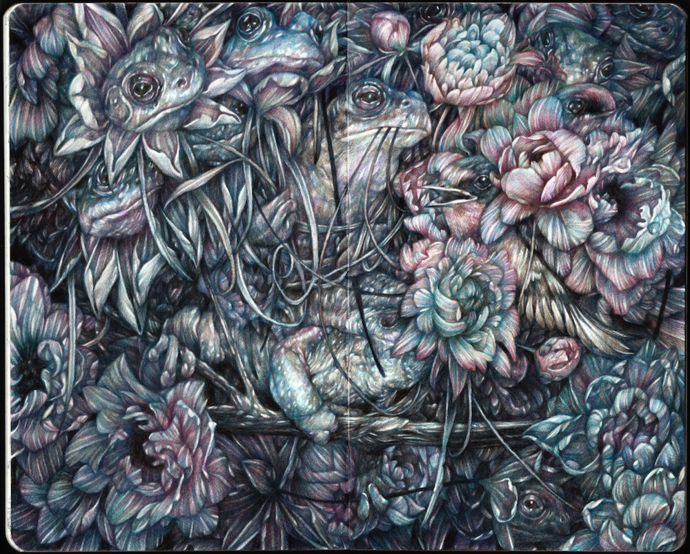 New Detailed Colored Pencil Drawings of Entangled Flora and Fauna by Marco Mazzoni