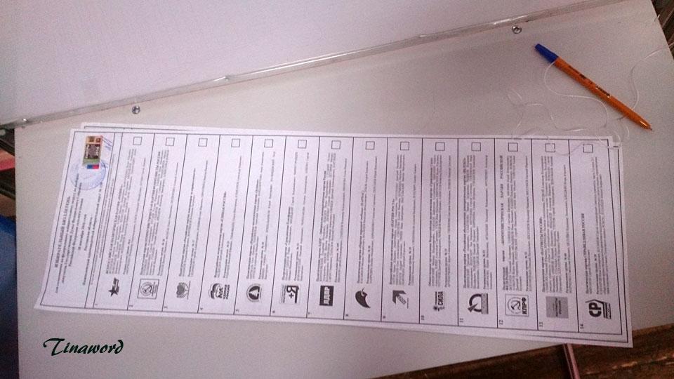 выборы-3.jpg