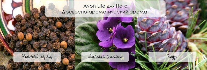 Avon Life для мужчин