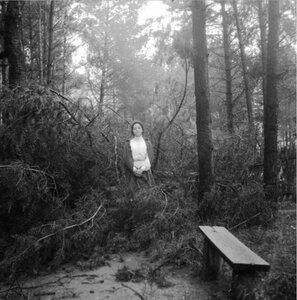 1904. Вешняки. Маня в поваленной бурею 16 июня сосне