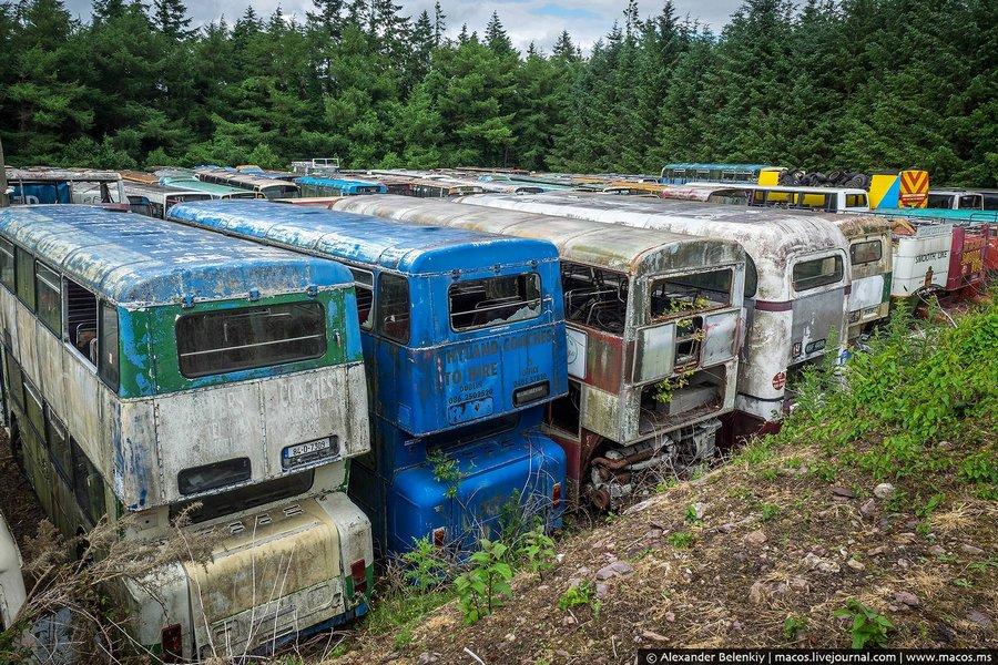 Прекрасные двухэтажные автобусы, возившие туристов по Дублину, Корку и другим городам Ирландии.