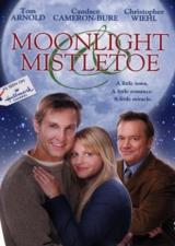Спасти сказку / Moonlight & Mistletoe (2008/DVDRip)