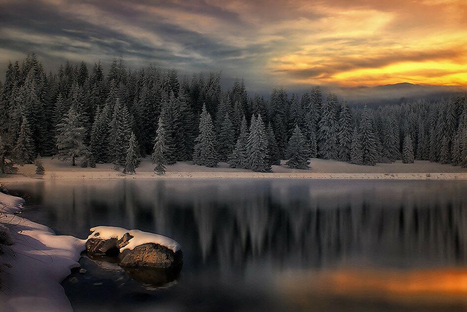 99px_ru_photo_91890_lesnoe_ozero_s_zasnejennimi_beregami_porosshimi_statnimi_eljami.jpg