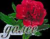 0_22a3e7_6d8e1496_XS.png