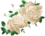 CJ_Colored Roses 2Lg_2.png
