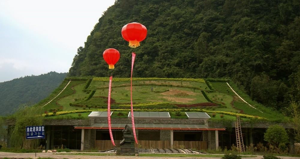 Дом в китайской провинции Причудливый узор из газона сплели на крыше китайского дома, мастерски зама