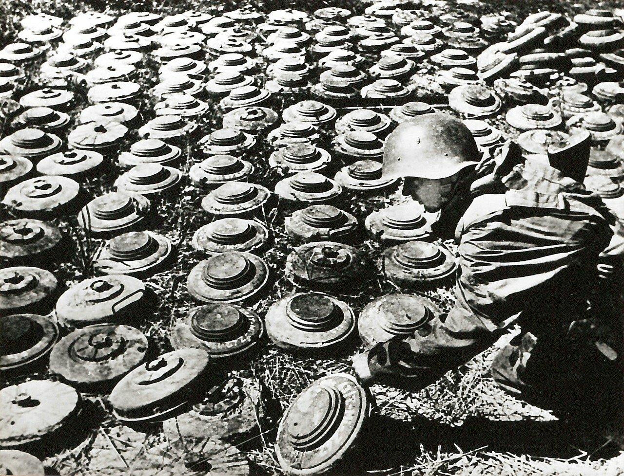1941. Солдат обезвреживает мины под Москвой