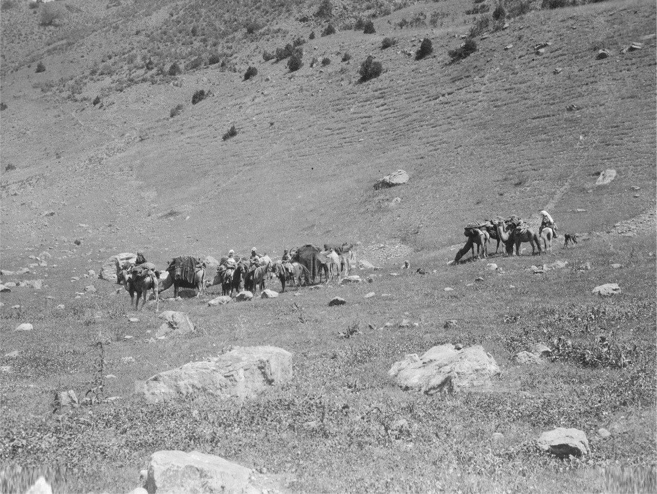 Киргизская семья в пути
