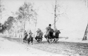 1915. Преследование противника казаками