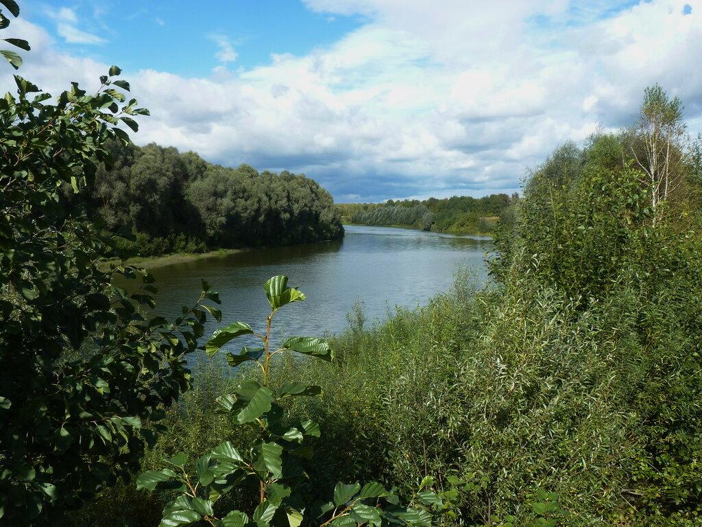 Мокша, славная река,полноводная..Не сказать, что глубока,но зеркальна, так чиста...