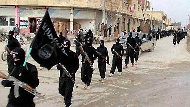 На стороне ИГ в Сирии воюют около 9 тысяч выходцев из РФ и других стран СНГ, - Путин