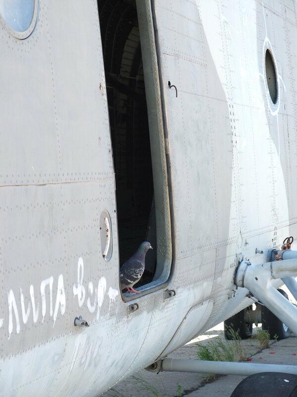 Вертолеты, Кинель черкасы 193.JPG