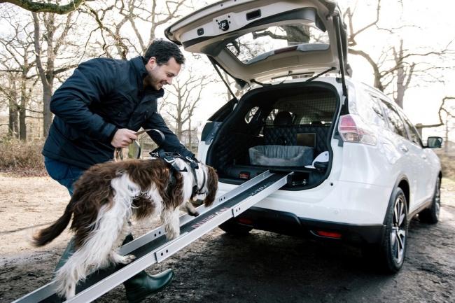 © nissan-global  Выдвижная рампа помогает животному легко ибыстро забираться всвой «люкс», а