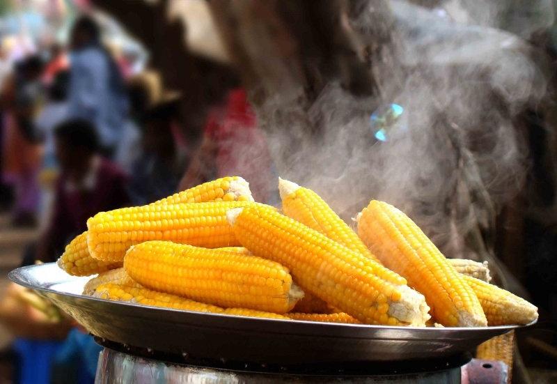Чтобы лакомиться сочной, нежной, сладкой и необычайно полезной кукурузой, достаточно при готов
