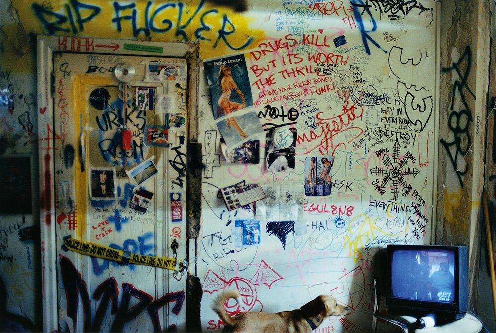 13. Я переехал в Филадельфию и жил с андерграундной рок-группой. Вернулся во Флориду.
