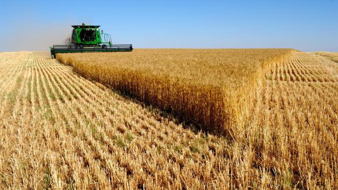 В2016 году Украина установила рекорд поэкспорту зерна