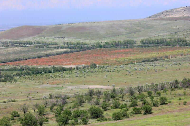 В окрестностях Феодосии